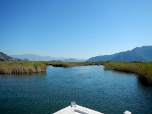 The Dalyan River on a Turkish tourist boat is the only way to do it!